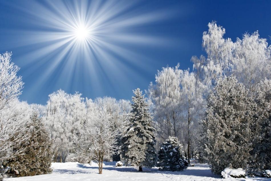 Теплая зима согласно народным приметам