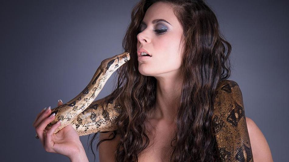 Женщине, увидевшей во сне укус змеи, стоит остерегаться появления соперницы наяву.