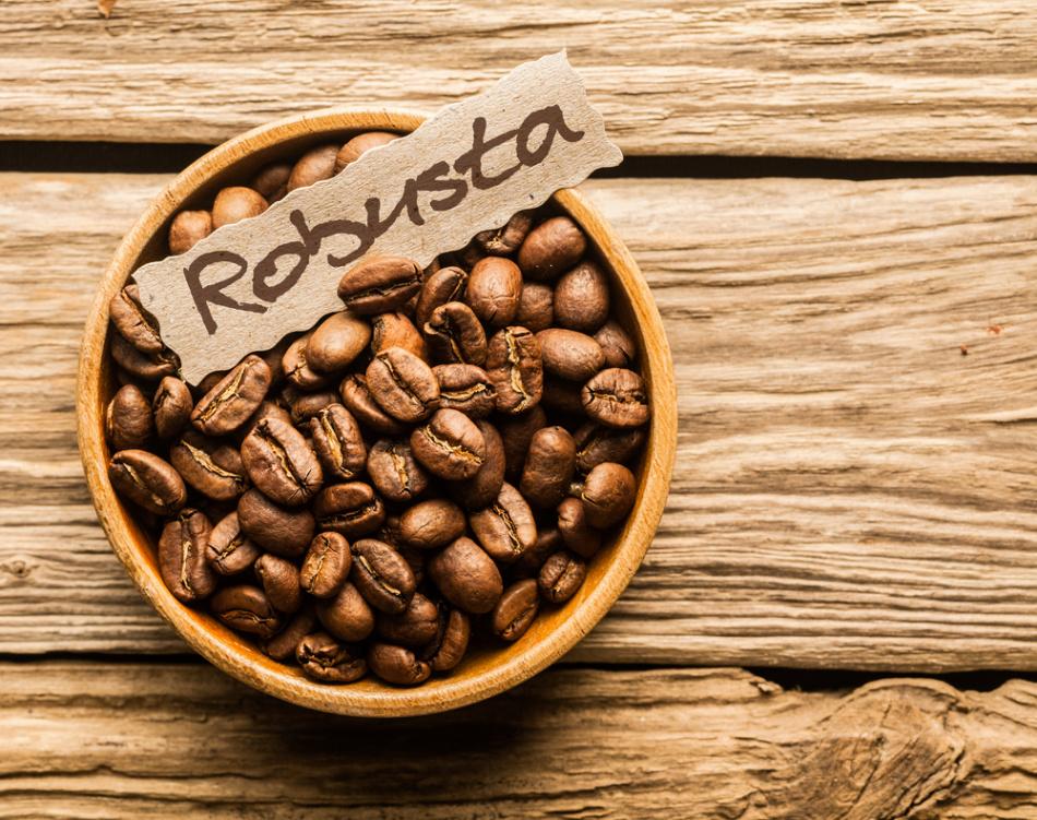 Кофейные зерна робусты