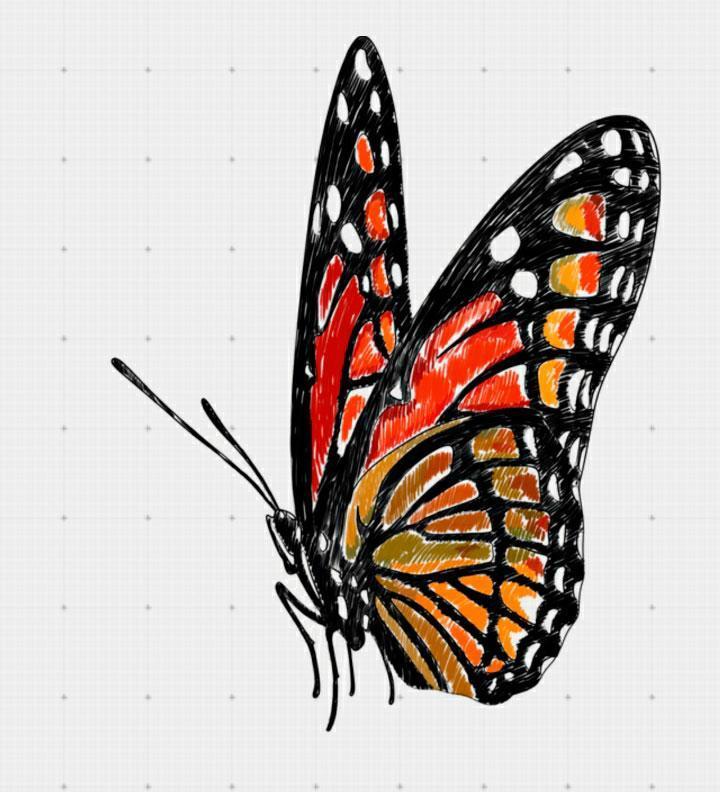 prodolzhaem-razukrashivat-babochku Как нарисовать 3д (3d) рисунок на бумаге карандашом