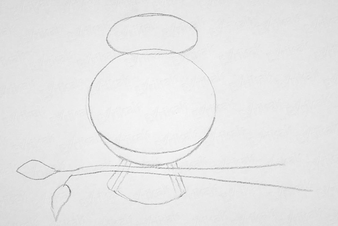 dorisovivaem-hvost Как рисовать сову карандашом поэтапно для начинающих и детей? Как рисовать по клеточкам сову, красками?