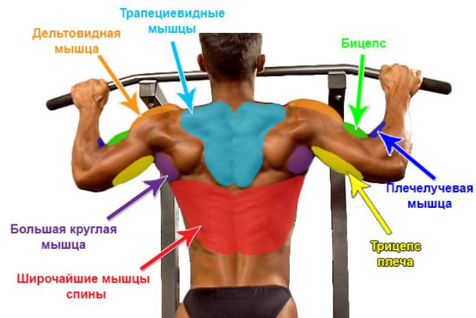 Задействуются многие мышцы