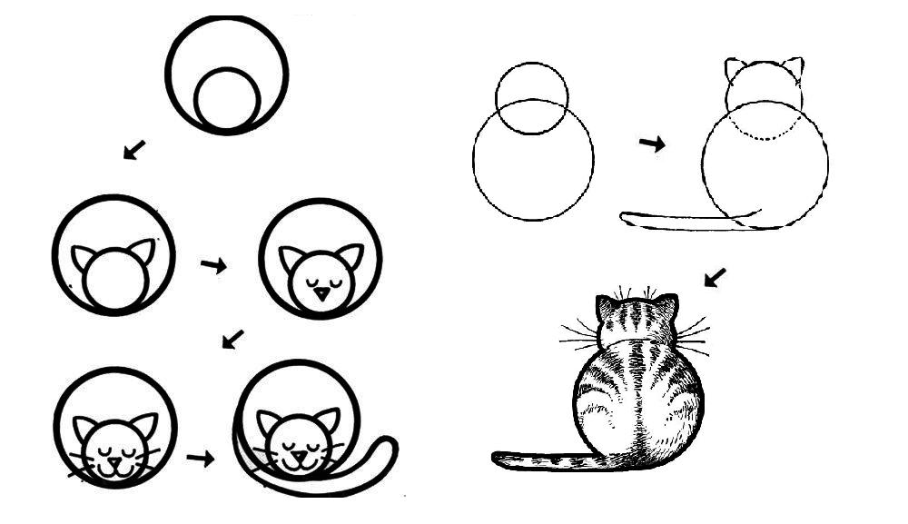 Как нарисовать кошку с помощью кругов: шаг за шагом