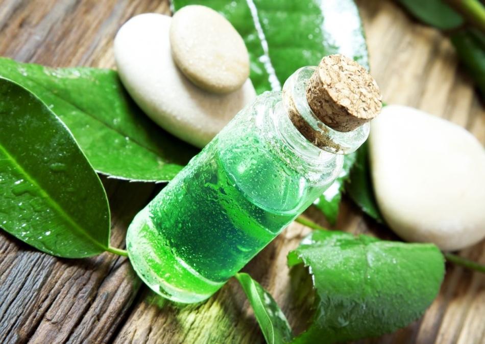 Масло чайного дерева прекрасно заботится о здоровье и молодости кожи рук