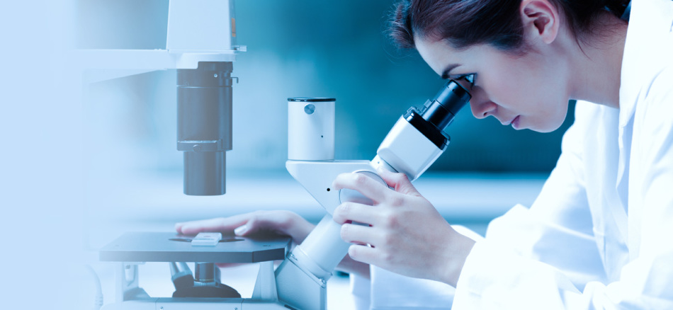 Расшифровка и нормы анализа на скрытую кровь