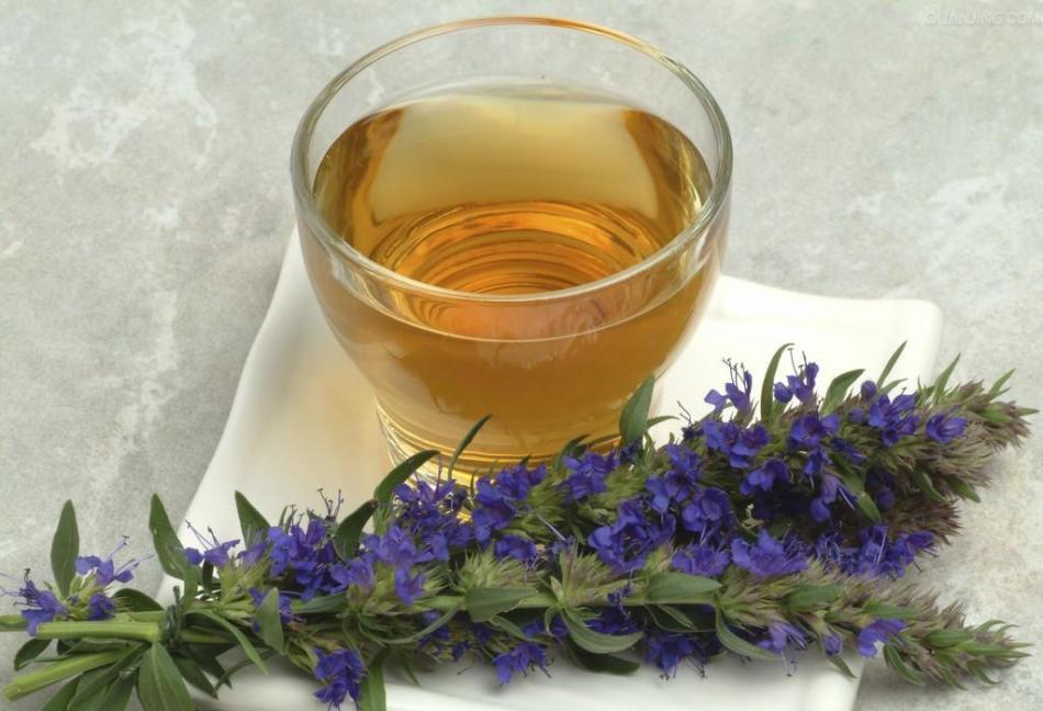Чай из иссопа обладает мочегонным действием