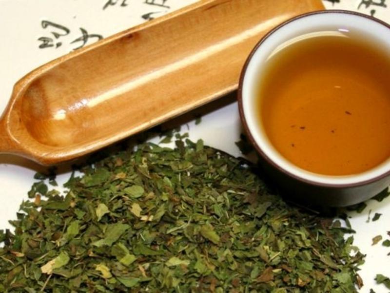 Чай из листьев ортосифона.