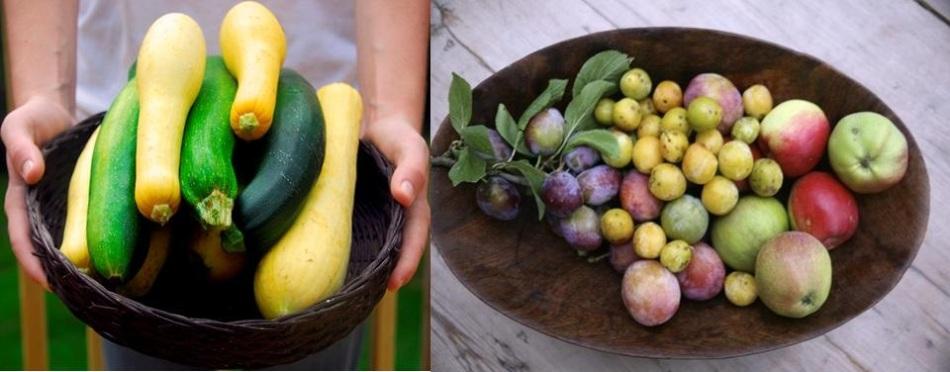 В тарелках разноцветные кабачки, желтые сливы и яблоки для приготвления приправы на зиму