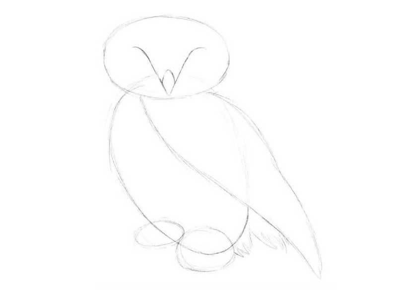 e7c7a93b9fe11f14fac0b006c52920bc Как рисовать сову карандашом поэтапно для начинающих и детей? Как рисовать по клеточкам сову, красками?