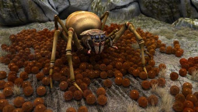 Крупный паук во сне: толкование