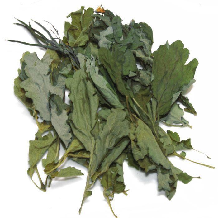 Косметическое масло чистотела можно приготовить из сухого сырья.