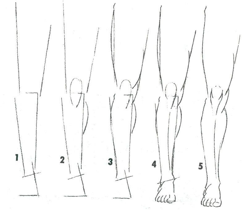 nogi-zhenshini-karandashom Как рисовать ноги человека? Подробно рассмотрим строение и технику рисования