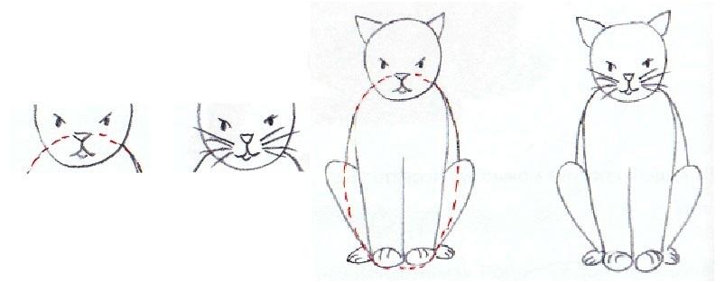 Как нарисовать кошку: прорисовка лап — набросок