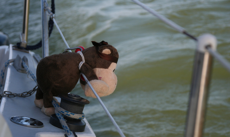 Качка в море способствует укачиванию даже здоровых людей
