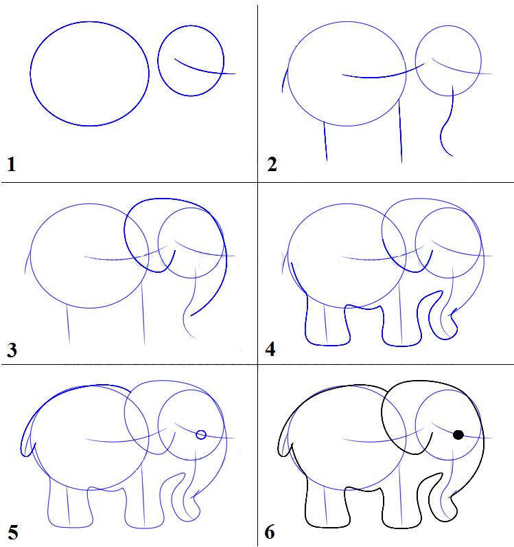 kak-narisovat-slona-karandashom-poyetapno Как нарисовать слона поэтапно: 5 вариантов как легко и просто нарисовать слона карандашом
