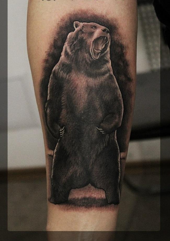 тату медведь наброски фото ножку крепят уровне