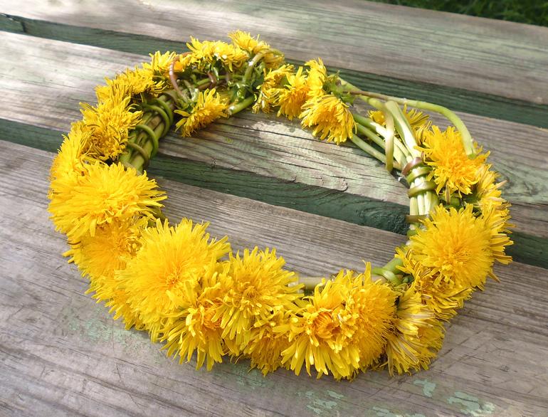 kak-zakanchivat-process-pleteniya-venka Как сплести венок из живых цветов, ромашек, одуванчиков, сирени, травы, полевых цветов на голову: пошаговая схема. Цветочный венок на голову: как делать, как закрепить в конце?