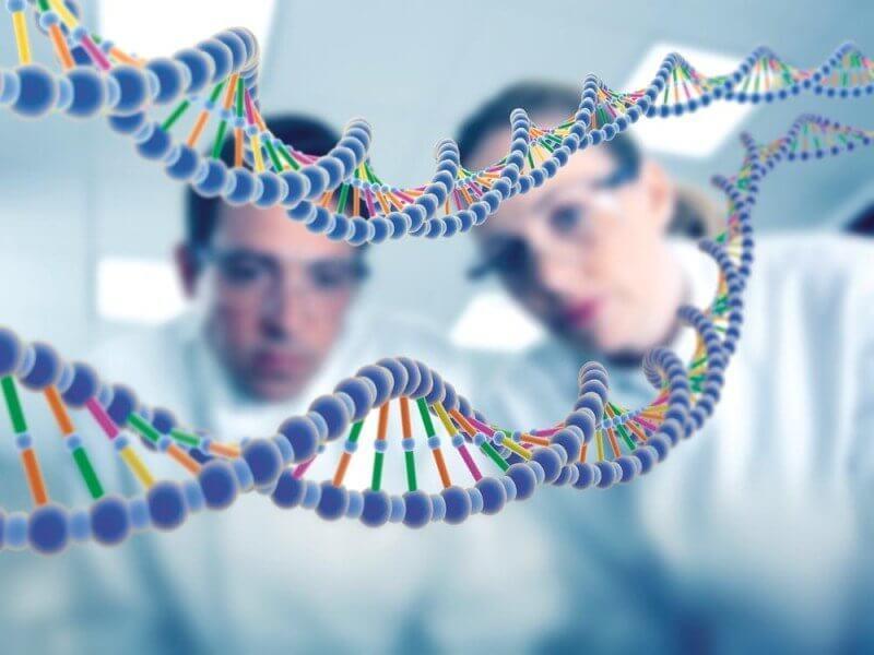 Биологическая несовместимость - проблема на пути к зачатию