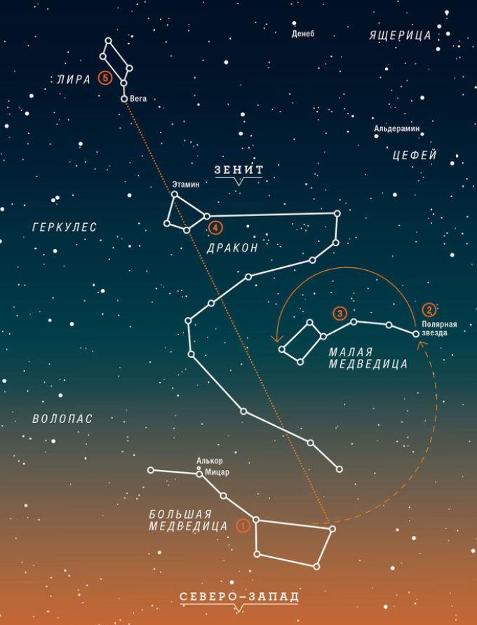 При изготовлении такого ночника можно воспользоваться следующими изображениями настоящих созвездий