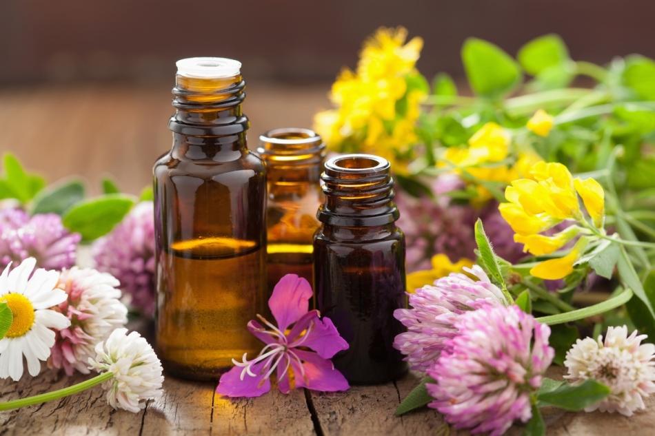 Отпугивайте мышей эфирными маслами и другими запахами