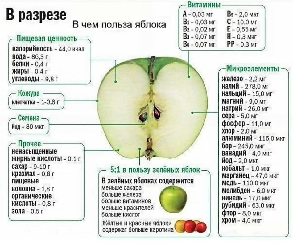 Полезно ли есть яблоки на ночь, если худеешь?