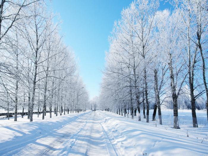 Зимняя метель