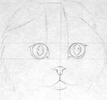 mordochka-kotenka Как нарисовать котенка карандашом поэтапно для начинающих и детей? Как нарисовать котенка аниме с милыми глазками, мордочку котенка?