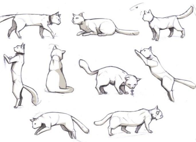 fc4b74cf87a480fa3c6b42948cf86946 Как нарисовать котенка карандашом поэтапно для начинающих и детей? Как нарисовать котенка аниме с милыми глазками, мордочку котенка?
