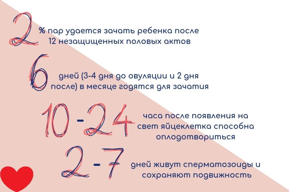 В цифрах