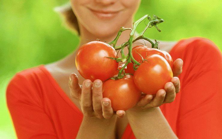 Снятся помидоры