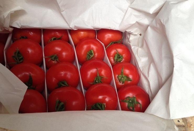 Отличным способом считается хранение помидор в бумаге